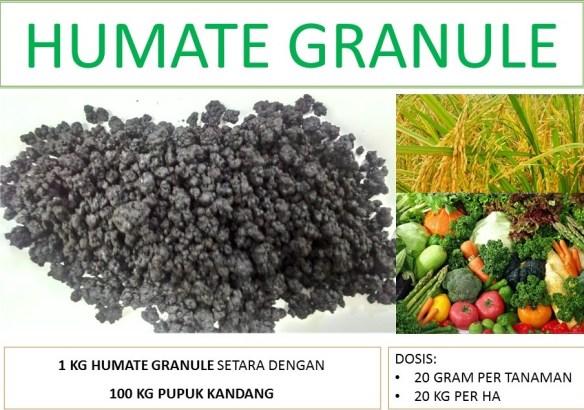 asam humat granul organik